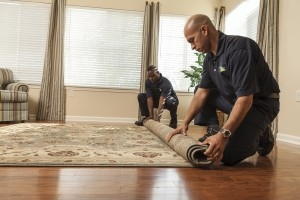 ServiceMaster Area Rug Cleaning Chicago